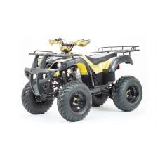 Квадроцикл 250 ADVENTURE Motoland