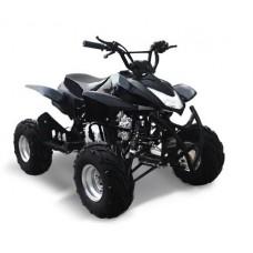 Квадроцикл ATV SP 303